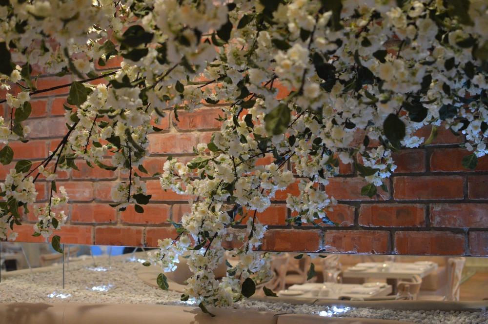 Blossom tree. Branches Ponteland.